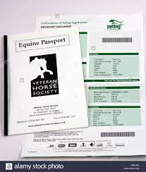 Horse Passport And Petlog Microchip Registration Form. All Horses In ...