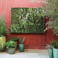 view in gallery framed vertical garden by flora grubb