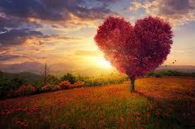 Wächst Mit Der Ehe Ein Baum Als Symbolisches Geschenk