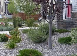 Best 25 Wooded Backyard Landscape Ideas On Pinterest  Forest Landscape My Backyard