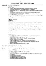 Payroll Resume Sample Analyst Payroll Resume Samples Velvet Jobs 10