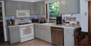 Dark Brown Kitchen Cabinets With White Appliances Wtvetlx Oak