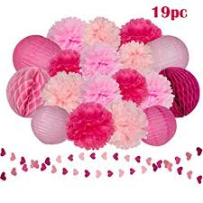 Tissue Paper Flower Wall Art Amazon Com Pink Rose Tissue Paper Flowers Pom Poms Lanterns