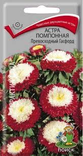 БерёзкаЗД.РФ - Купить <b>семена астра</b> (однолетняя) помпонная ...