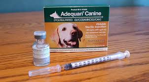 pain relief injection for dogs