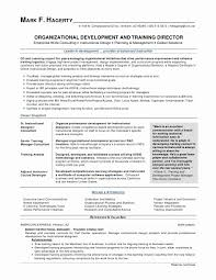 Executive Summary Resume Example Elegant Sample Resume Format New