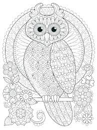 Free Printable Owls Funny Little Owl Coloring Pages Printable For