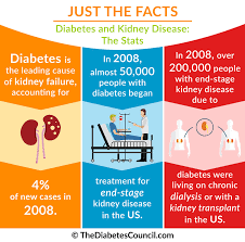 Kidney Disease Stages Chart Diabetes And Renal Failure Everything You Need To Know