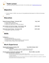 Resume Objectives Retail Fishingstudio Com