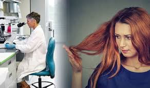 Hair loss treatment: Scientists discover new approach to combat thinning  hair | Express.co.uk