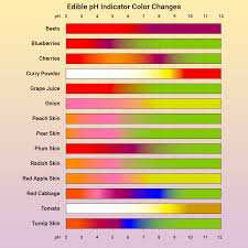 Red Cabbage Juice Indicator Chart Edible Ph Indicators From Your Kitchen And Garden