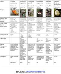 Pnw Medicinal Mushroom Chart Reishi And Roses