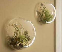 decorative wall sconces for plants ideas home interior