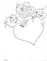 2550x3300 edelweiss flower drawing edelweiss flower drawing at getdrawings from pencil drawings of flowers and