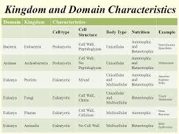Animal Kingdom Classification Kingdom Characteristics Chart