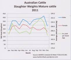Australian Beef Slaughter Cattle Producer Nt