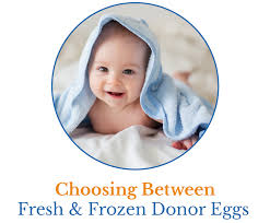 choose between fresh and frozen donor eggs er