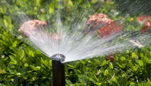 is an irrigation system right for you