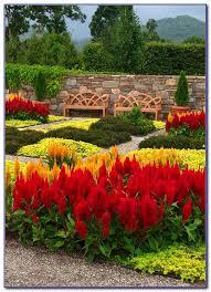 north ina botanical gardens asheville