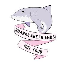 cute shark drawing tumblr. Wonderful Shark Clip Freeuse Download Drawing Sharks Cute Shark At Getdrawings Com Intended Cute Tumblr H