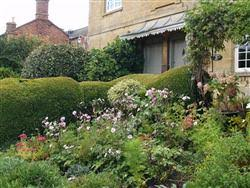 Small Picture Cottage Garden Design Course Study landscaping at home