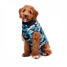 Recovery Suit Dog Suitical