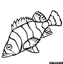 Small Picture Sea Life Online Coloring Pages Page 1