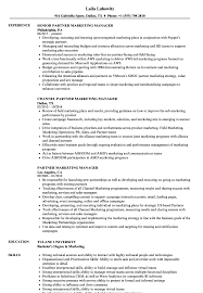 Download Partner Marketing Manager Resume Sample as Image file