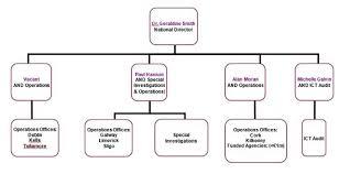 Audit Structure Chart Internal Audit Division Hse Ie