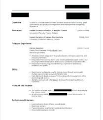 How To Make A Resume With No Experience Extraordinary First Resume No Work Experience Template First Time Resume With No
