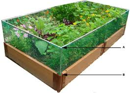 4x8 raised bed vegetable garden layout. What To Plant In A 4×8 Raised Vegetable Garden Bed Layout 4x8