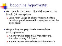 com dopamine hypothesis of schizophrenia