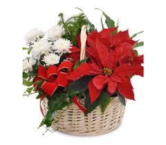 poinsettia garden basket in savannah ga john wolf florist