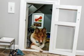 homemade dog kennels 2. Diy Dog Doors Inspirational Built In Kennel Under The Stairs Album On Imgur Homemade Kennels 2