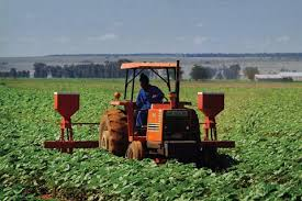 """Résultat de recherche d'images pour """"Investissement agricole au Cameroun"""""""