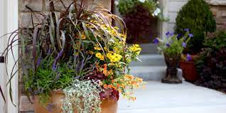 planting flowers in containers pots