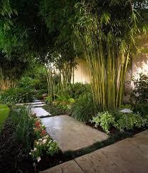 Backyard Landscape Design Beauteous Afbeeldingsresultaat Voor Modern Clean Bamboo Landscape Design R