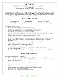 Outstanding Resumes For Sales Executives Gallery Documentation