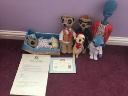 more meercat and argos toys
