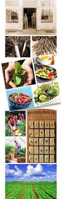 garden seed companies. Interesting Companies And Garden Seed Companies A