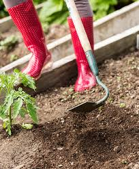 top 10 must have gardening tools