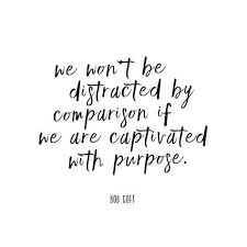 Comparison Quotes Gorgeous We Won't Be Distracted By Comparison If We Are Captivated With