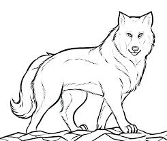 Realistic Wolf Coloring Pages Wolf Coloring Pages 4 Realistic Wolf