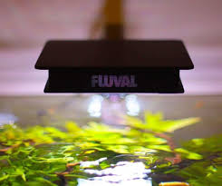 Top 5 Best Nano Aquarium Leds For Your Planted Freshwater