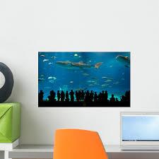 Aquarium Mural Design Amazon Com Wallmonkeys Worlds Largest Acrylic Aquarium