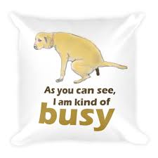 Pillow Quotes Mesmerizing Limited Edition Funny Dog Square Pillow Quotes As You Can See I