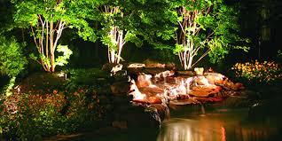 landscape lighting trees. Perfect Trees BENEFITS OF LANDSCAPE LIGHTING To Landscape Lighting Trees