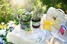 Kitchen Garden In Balcony 9 Tips For A Beautiful Balcony Garden Housing Blog
