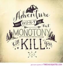 Adventure Love Quotes Amazing Adventuresmayhurtyoumonotonykilllifequotessayingspictures