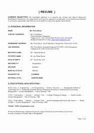 Amazing Resume Examples Amazing Resume Examples Objective A Resume Example Awesome Example 13